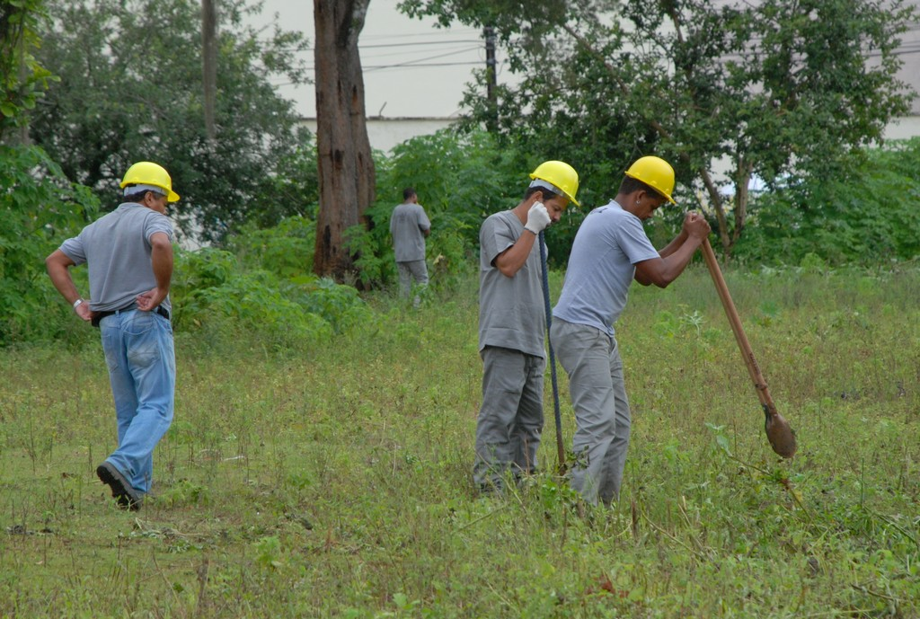 Funcionários da empresa contratada pelo Governo do Estado limpam terreno para demarcação