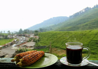 roasted corn, black coffee, enjoy black coffee in Puncak, coffee and toast, coffee