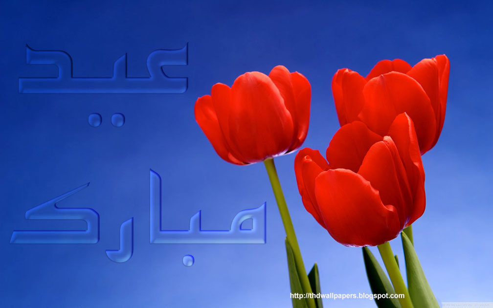 Sweetcouple red rose eid mubarak greetings cards flowers 2012 urdu text red rose flowers eid mubarak greetings cards 2012 urdu text 1 m4hsunfo