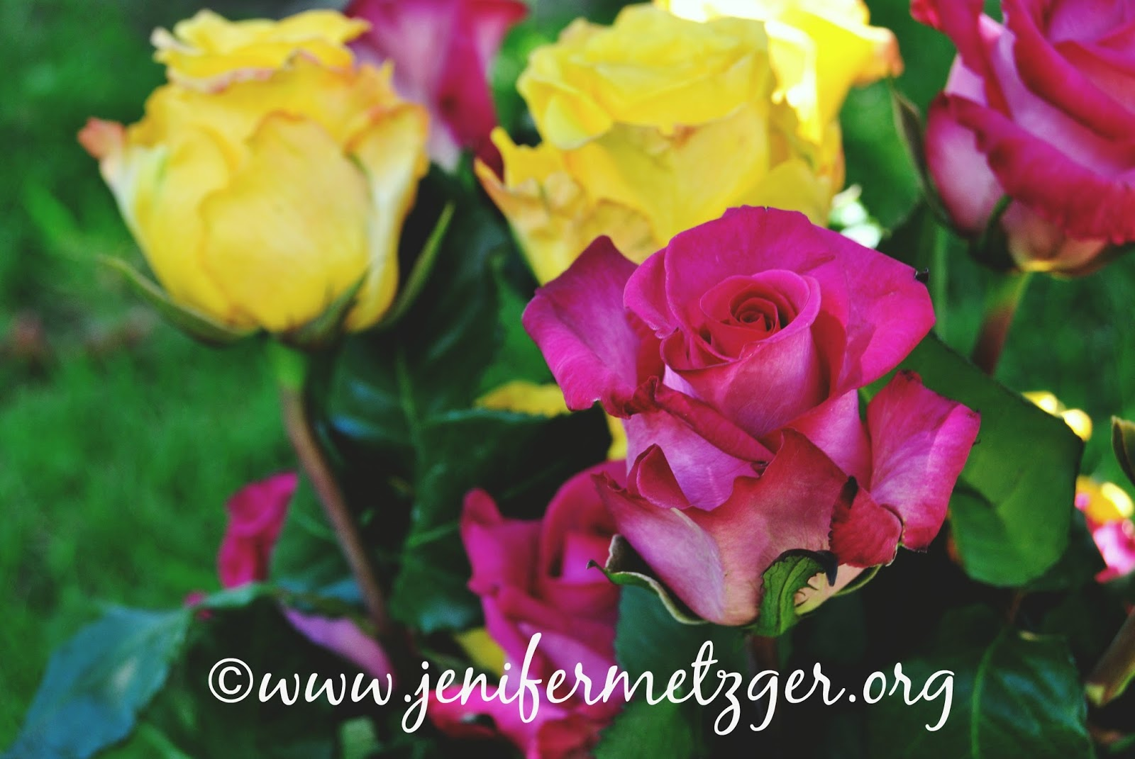 #flowers #roses #bouqs
