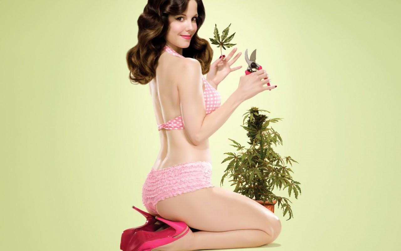 http://3.bp.blogspot.com/-EeMPfMk0ydE/TdWrbOIAJGI/AAAAAAAAAtE/WDBc8rHe5T0/s1600/Creative_Wallpaper_Ganja_cannabis_herb_018715_.jpg