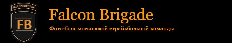 Falcon Brigade