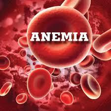 Jenis-Jenis Anemia Dan Cara Mengobatinya Secara Alami