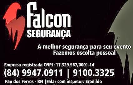 Falcon Segurança