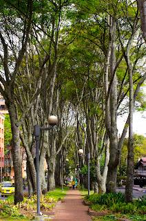Calle 94. Foto: Jorge Bela