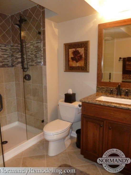 Basement bathroom design ideas for Toilet and bath design ideas