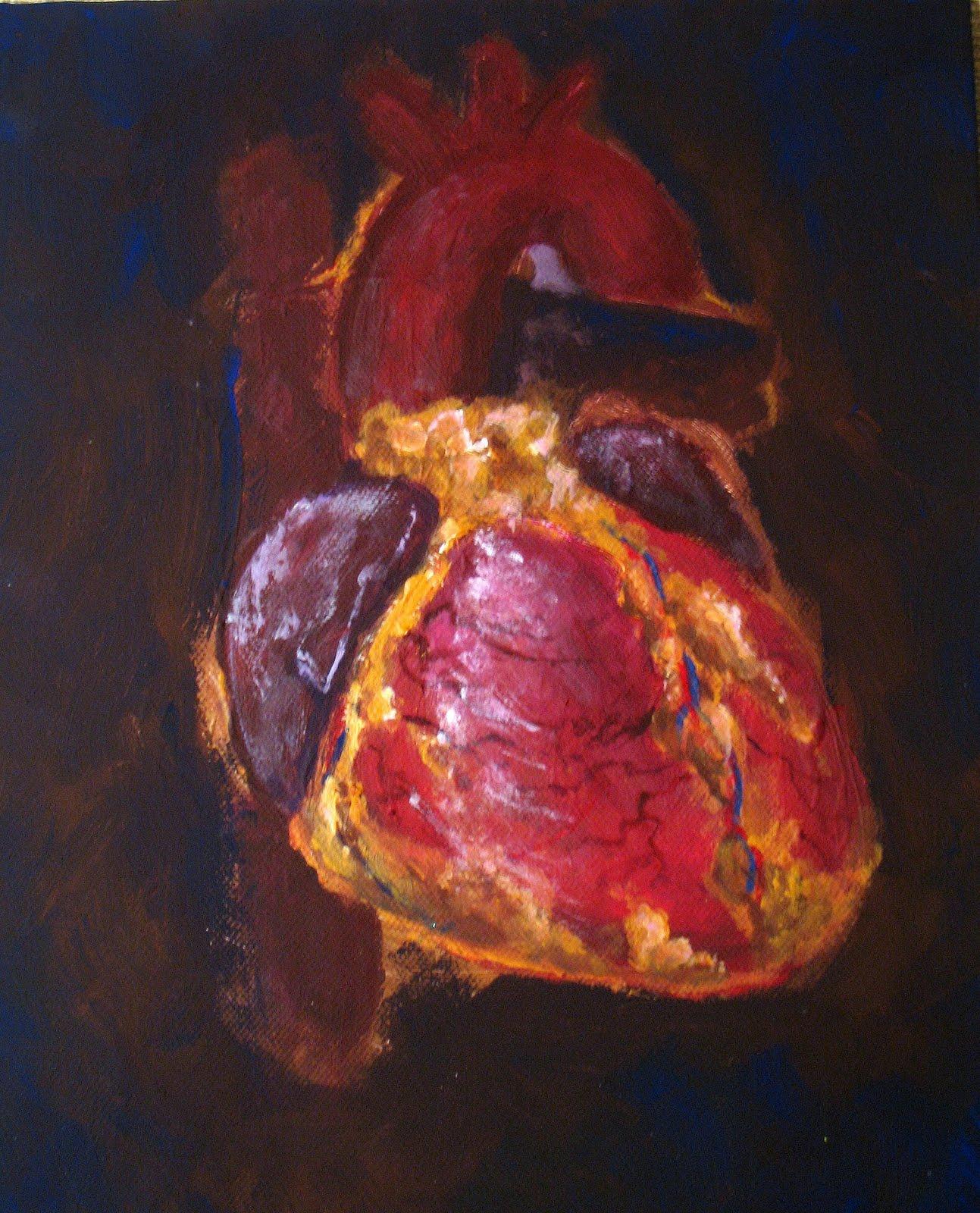 el moderno prometeo: Anatomía y fisiología del corazón