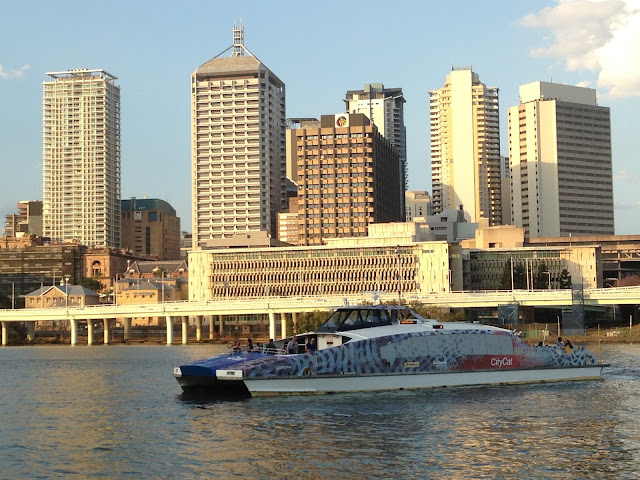 Brisbane city and the city cat