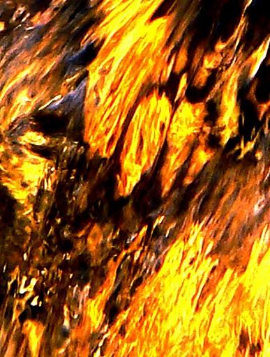 [Jeu] La passe à neuf (V.2) - Page 38 Effet+peinture+eau+couleurs+feu+jaune+orange+marron+noire+et+blanche
