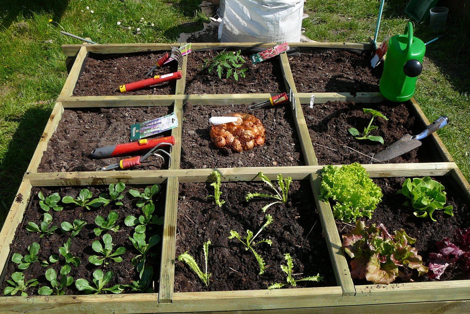 Les jardins du laveu un nouveau bac rejoint le jardin for Jardin en bac
