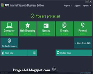 AVG Internet Security Business Edition 2013