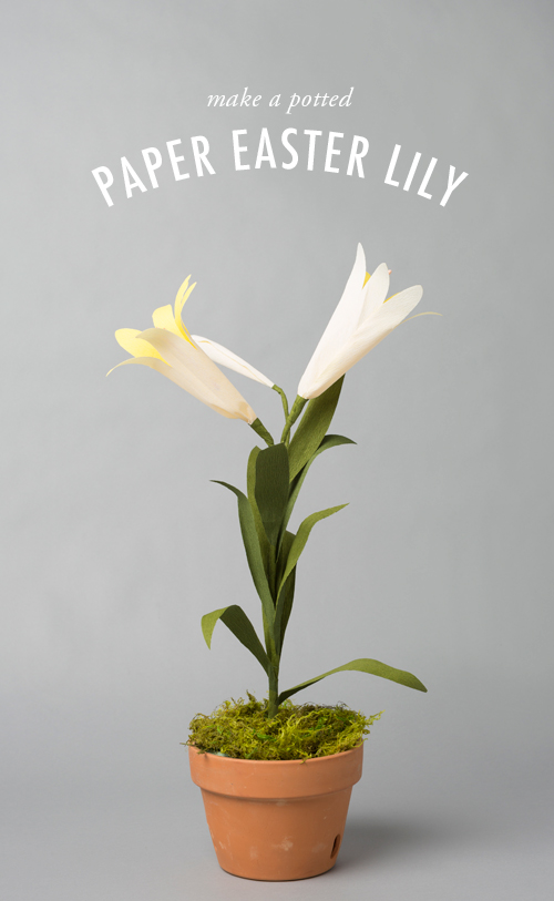 Make a potted paper Easter lily