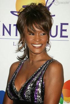In Memorian Whitney Houston Nascimento: 9 de agosto de 1963-Falecimento: 11 de fevereiro de 2012