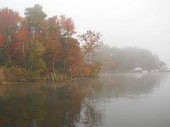 Fog is lifting on Mill Creek in Solomons.  Beautiful fall morning.