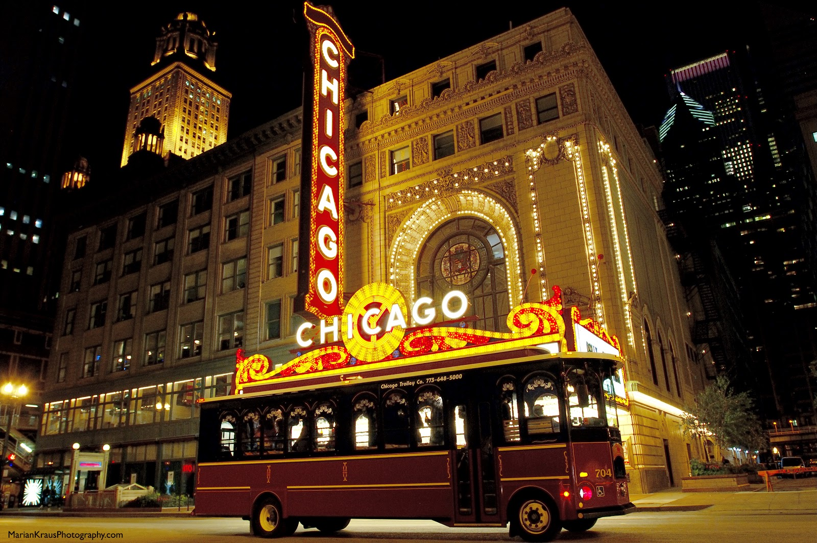 Chicago Holiday Lights Tour Reviews
