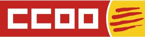 El bloc dels nostres companys de la Ssecció Sindical de CCOO a la Diputació de Tarragona