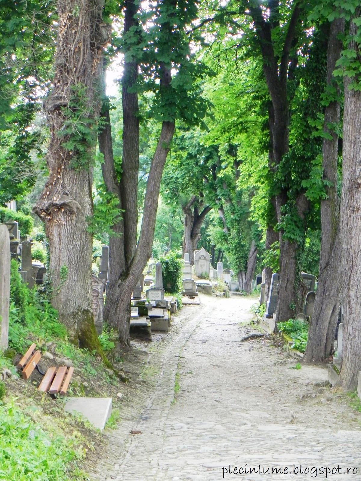 Cimitirul Bisericii din deal