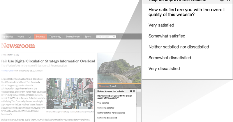 Introducing website satisfaction by Google Consumer Surveys