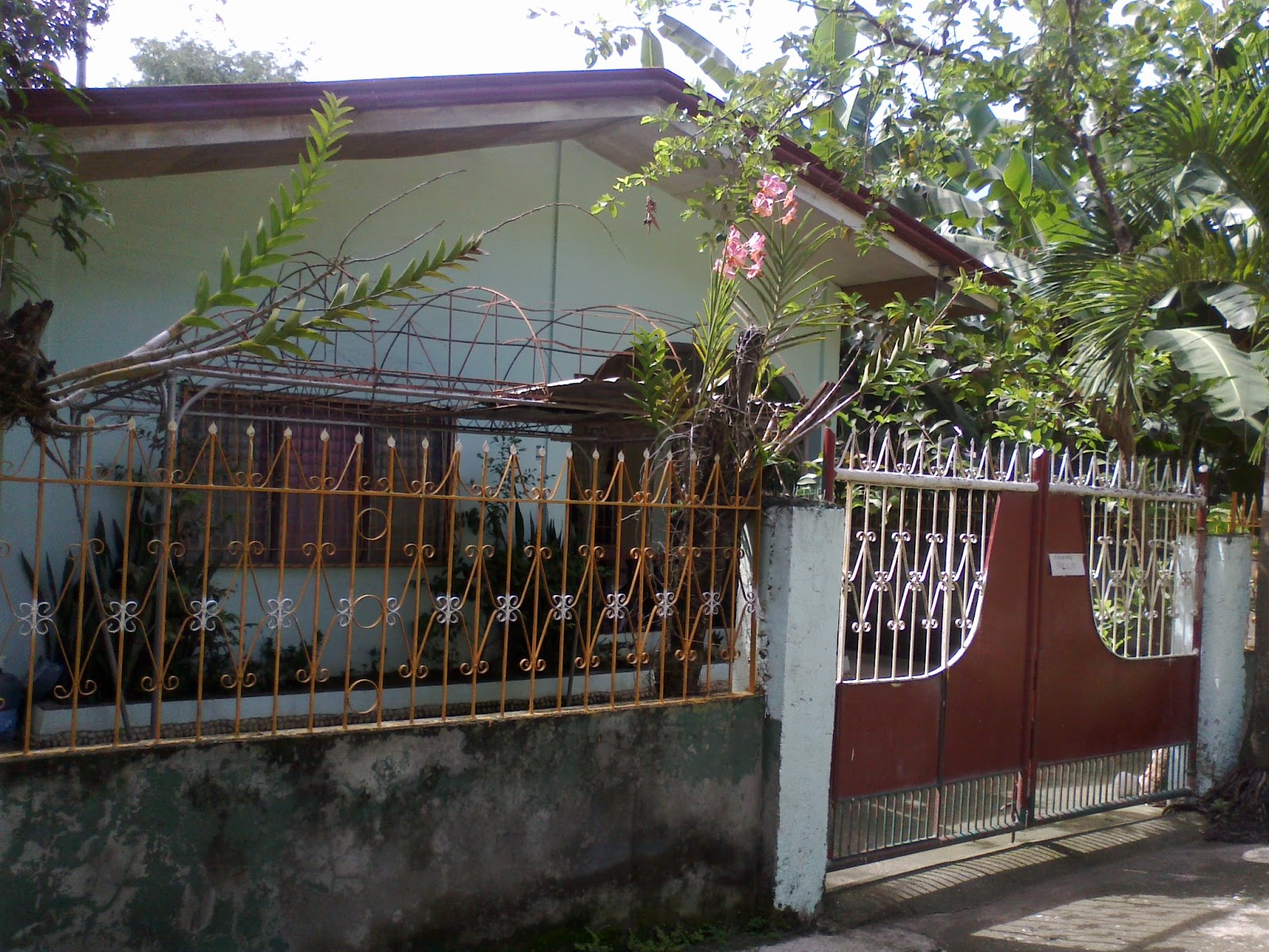 Iligan City, Lanao del Norte, house and lot for sale