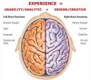 Fakta Menarik Seputar Otak Manusia