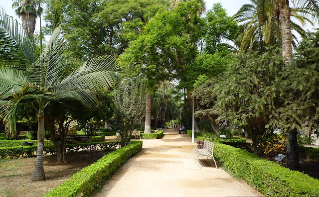 Parque de Málaga, park w centrum Malagi, Hiszpania