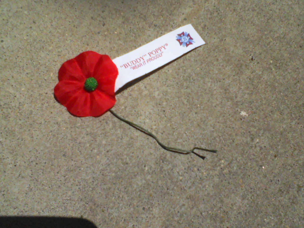 Kriss 2011 A Photo A Day Memorial Day Poppy Veterans Of