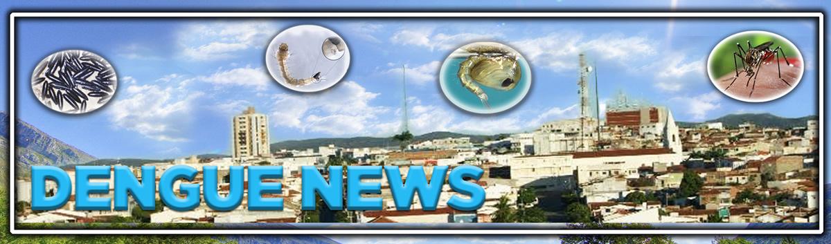 Dengue News
