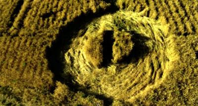 crop circle en iran