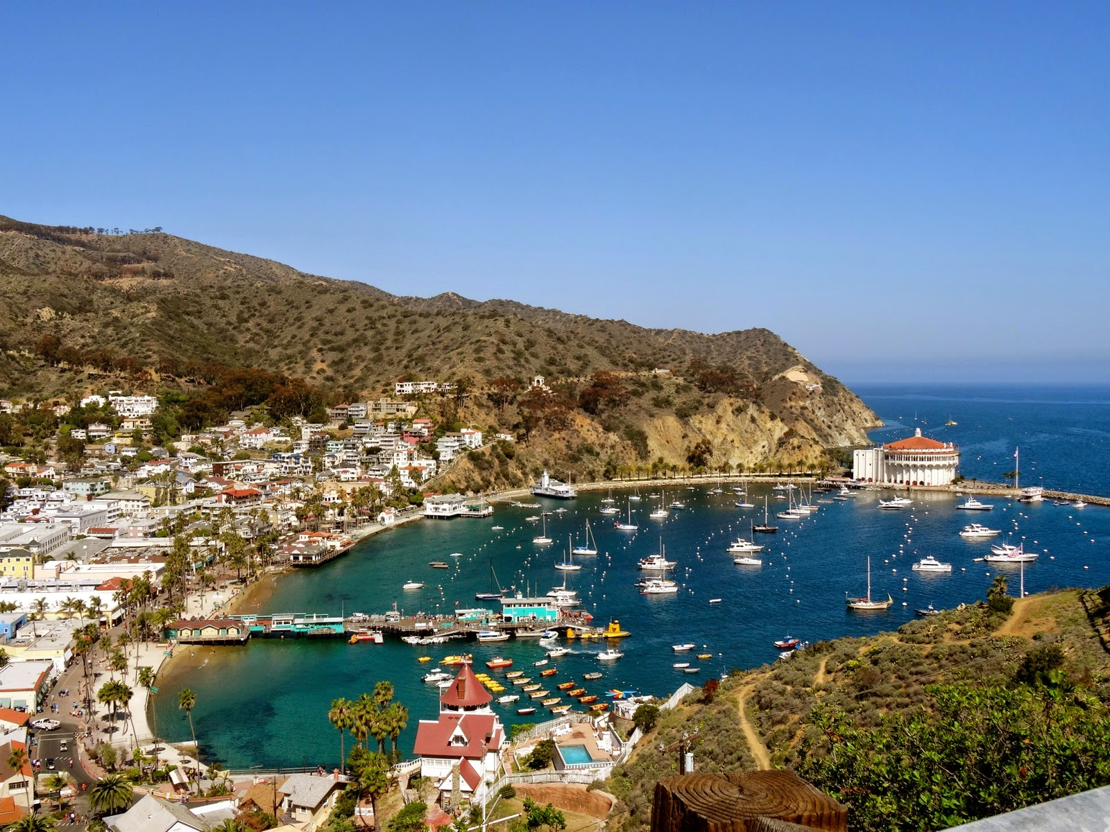 Coaching For Pizza Carnival Cruise To Catalina Island And