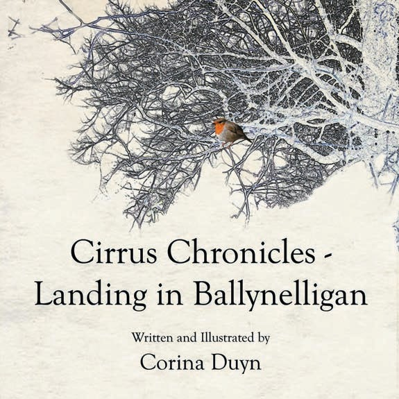 Cirrus Chronicles (book)
