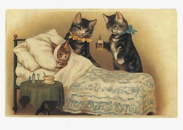 arti mimpi kucing terluka, arti mimpi kucing marah, arti mimpi kucing banyak, arti mimpi kucing berantem, arti mimpi kucing berkelahi, arti mimpi kucing kawin, arti mimpi kucing putih, arti mimpi kucing beranak, arti mimpi kucing hitam, arti mimpi kucing mati,