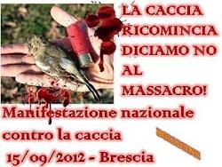 Brescia , corteo nazionale 2012