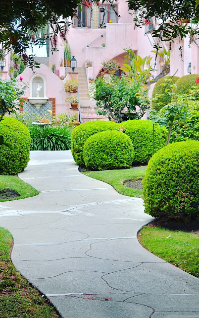 Pink Building water fountain walkway pathway green landscape