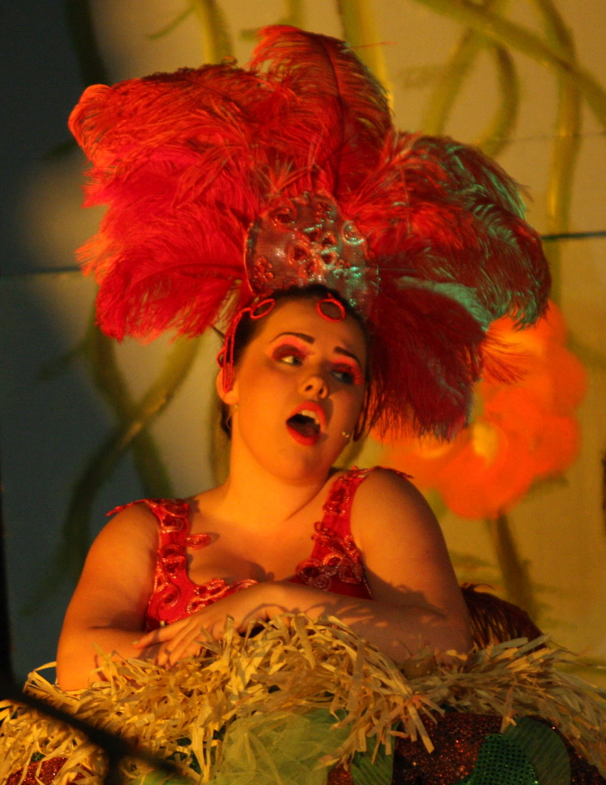 Mayzie on the Nest (Copyright Peter Cook)  sc 1 st  The Old Button & The Old Button: Making the Costumes for Seussical the Musicals ...