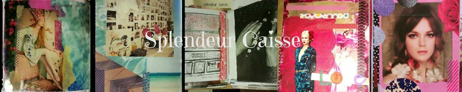 Splendeur Caisse