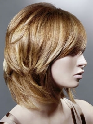 Layers Hair Salon, Long Hairstyle 2013, Hairstyle 2013, New Long Hairstyle 2013, Celebrity Long Romance Romance Hairstyles 2062