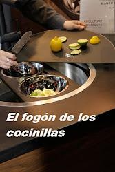 Cocinillas en acción  Síguenos en Facebook