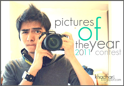 Picture of The Year 2011 Contest