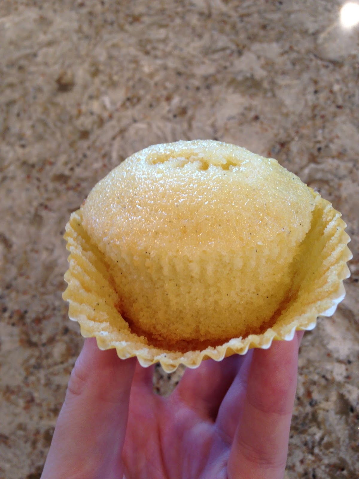 BAKING is a SCIENCE Vanilla Cupcakes The Great Butter vs Oil