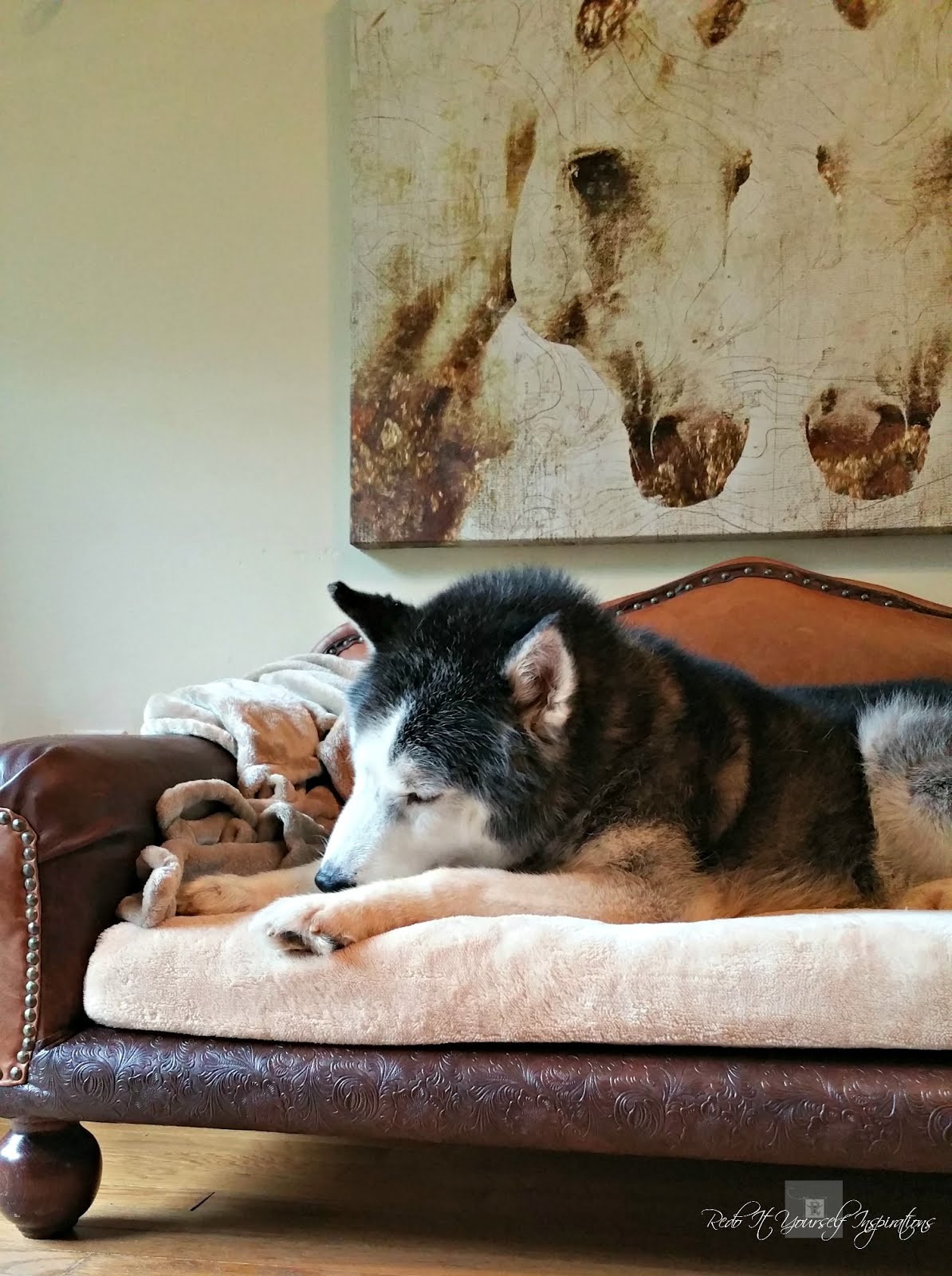 DIY Dog Sofa
