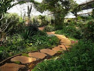 การทำทางเดินในสวน Garden Walk Way