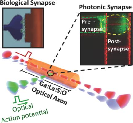 Glass Fibers May Open Door to Neuromorphic Computing
