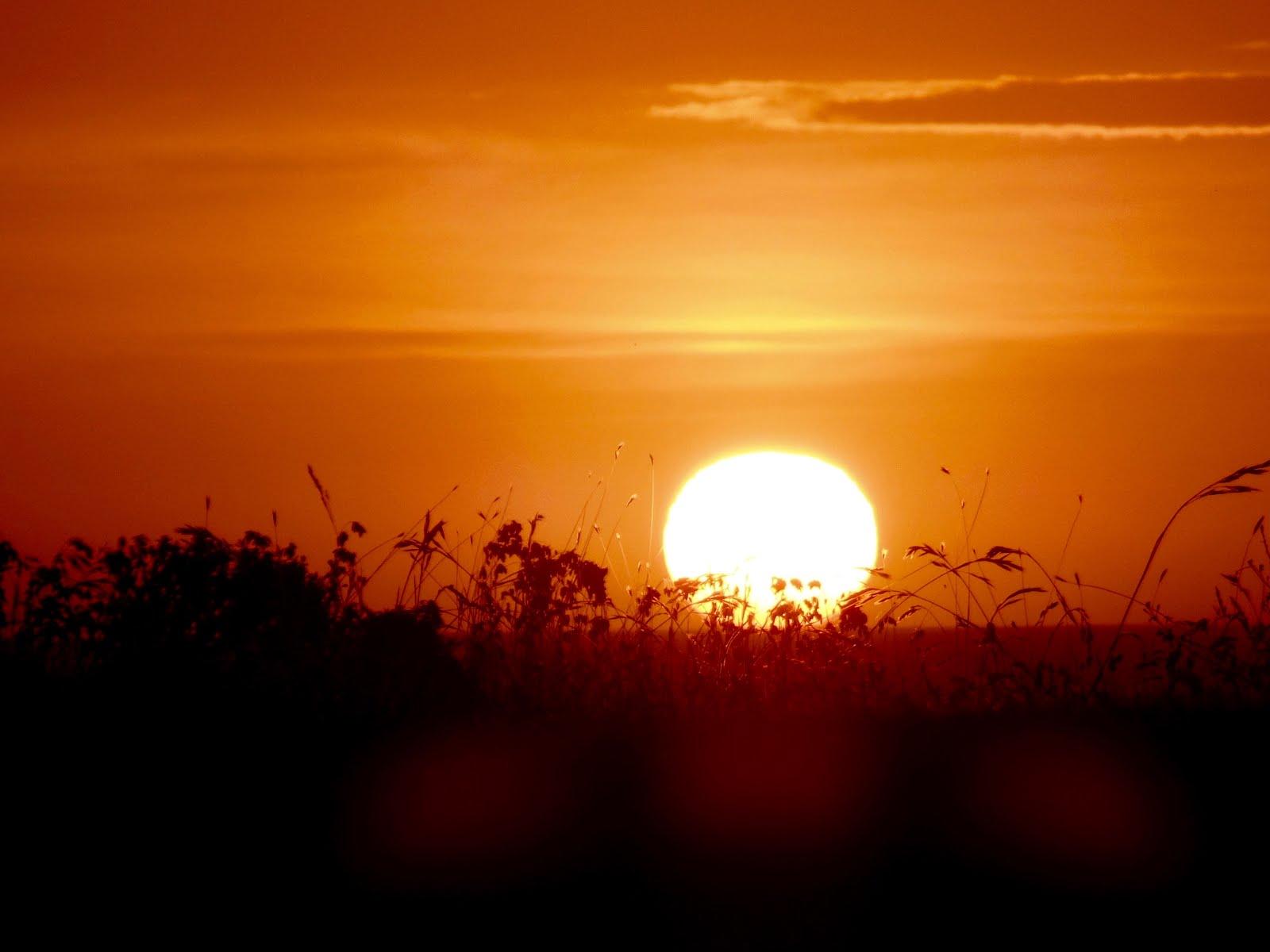 Howard Creek at sunset