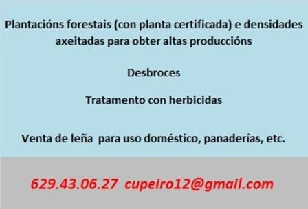 Plantacións e desbroces