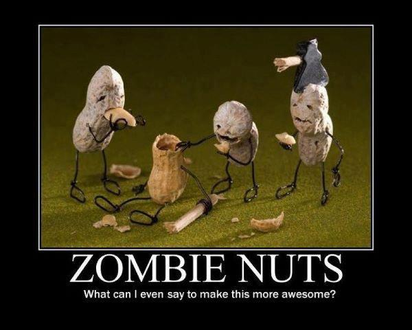 Funny Memes About Zombies : Something geeky this way comes zombie memes