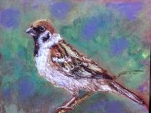 Painting of a sparrow done by a student during the soft pastel workshop