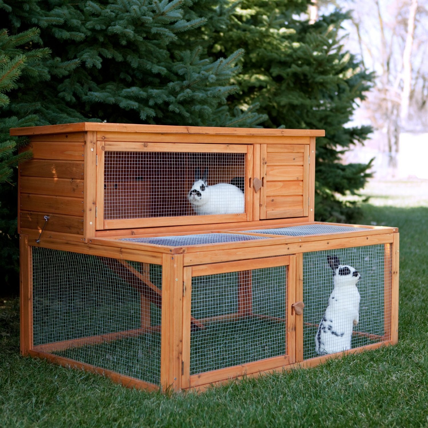 in the household and with the bunny comes the need for a ForWhat Is A Rabbit Hutch