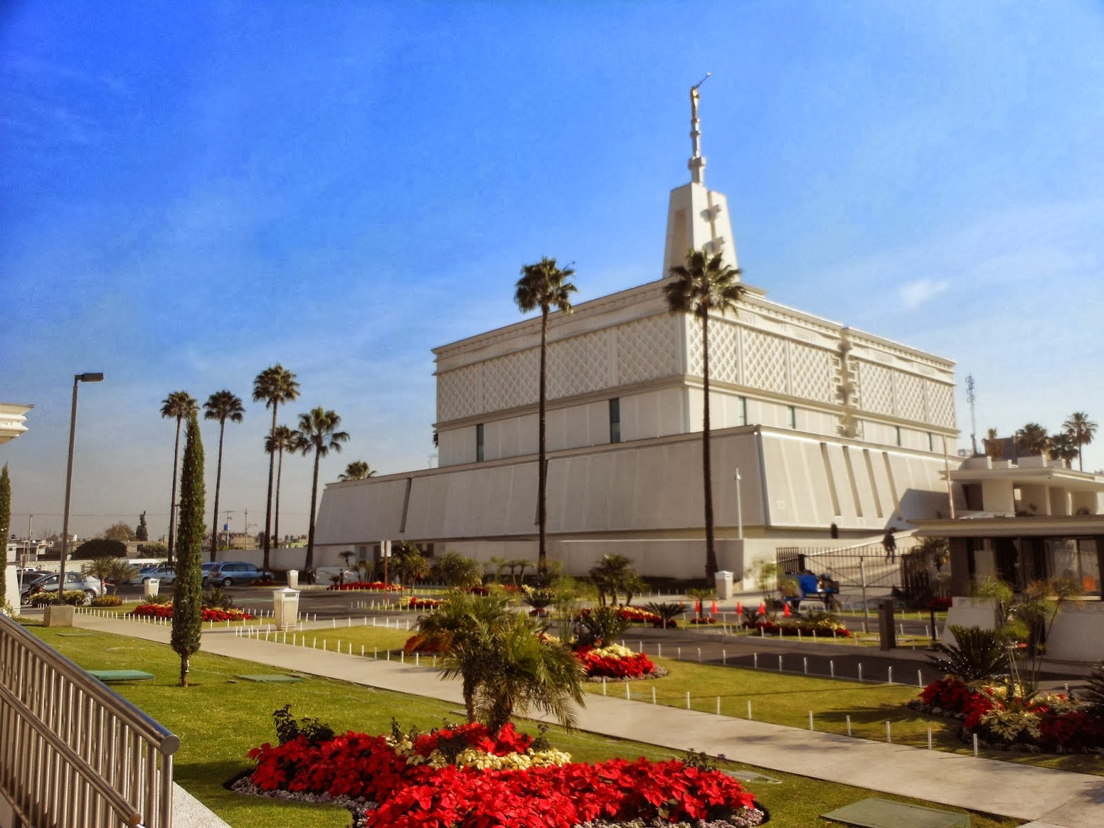 view of Mexico City L D S Temple w/ poinsettias poinsettas