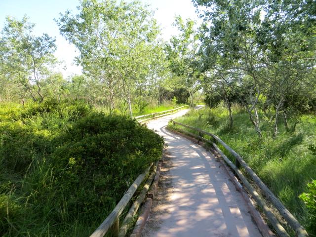 S'Albufera natural park Mallorca luonnonpuisto