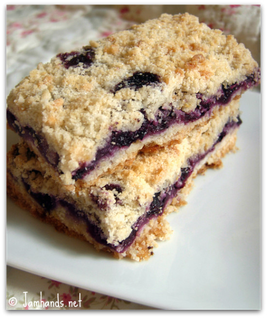 Jam Hands: Blueberry Crumb Bars